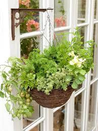 Planter Pot Pots Gorgeous Beautiful Pot Palm Frond Hanging Planter Pot Ideas