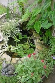 Backyard Fish Ponds by Best 25 Small Backyard Ponds Ideas On Pinterest Small Garden