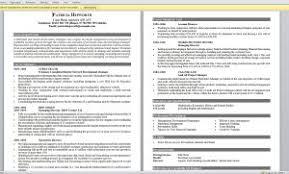 Sample Customer Service Representative Resume by Examples Of Resumes Customer Service Representative Resume