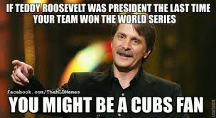 Cubs Fan Meme - 10 things i wish they told me before becoming a chicago cubs fan
