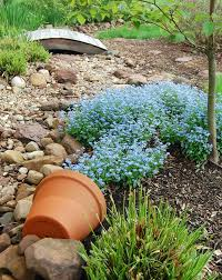 72 best spill pots images on pinterest landscaping plants and