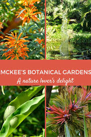 Botanical Garden Pictures by Best 25 Botanical Gardens Ideas On Pinterest Kew Gardens