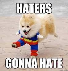 Pomeranian Meme - haters gonna hate pomeranian quickmeme
