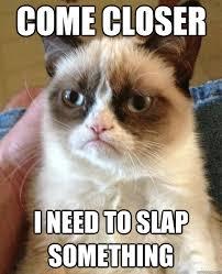 Slap Meme - come closer i need to slap something cat meme cat planet cat planet