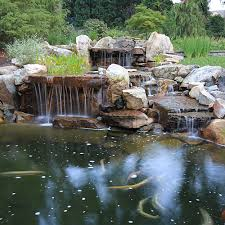 photo gallery of swimming pools ponds fountains waterfalls