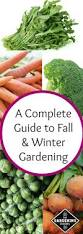 111 best winter vegetable garden images on pinterest winter
