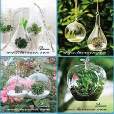 indoor plant arrangements indoor plant glass vases for flower arrangements wedding hanging
