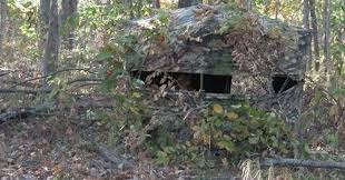 Natural Hunting Blinds 5 Useful Blind Hunting Tactics For Deer