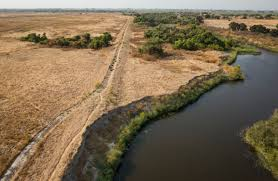 grants provide big boost in central valley floodplain restoration