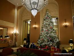 the best christmas spots in san francisco taylor hearts travel