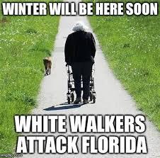 Florida Winter Meme - image tagged in white walker imgflip
