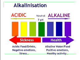 alkaline diet healthy100tips com healthy food pinterest