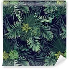 exotic wallpapers u2022 pixers