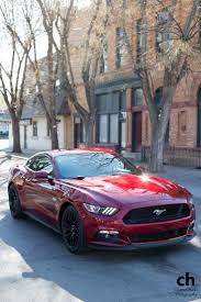 Release Date For 2015 Mustang Driven 2015 Ford Mustang Gt 2015 Ford Mustang Ford Mustang Gt
