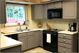 Painting Kitchen Cabinet Doors Kitchen Cabinet Door Paint Painting Cabinet Doors Cabinets