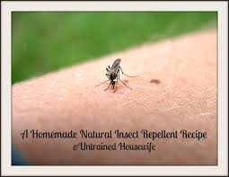 a homemade natural insect repellent with essential oils