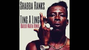 shabba ranks bedroom bully shabba ranks bedroom bully www cintronbeveragegroup com
