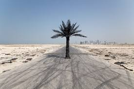 the island of a million palm trees wouter osterholt