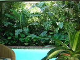 download tropical landscaping garden design