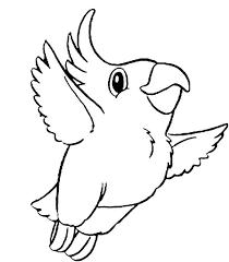 kokapetl parrot coloring download u0026 print coloring