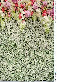 wedding backdrop green colorful flowers with green wall for wedding backdrop stock photo