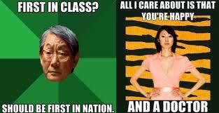 Tiger Mom Meme - asian mother meme mother best of the funny meme