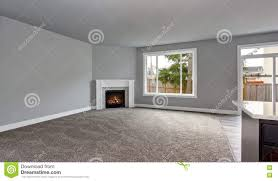 grey house interior of living room with firwplace and carpet floor