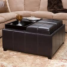 Storage Ottoman Coffee Table The Amazing Ottoman With Storage And Tray With Regard To Household