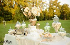 interior design amazing vintage wedding theme decorations