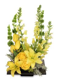 auburn florist yolo yellow arrangement in auburn ny foley florist
