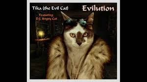 tika the evil cat featuring d j angry cat evilution youtube