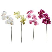 artificial flower smycka artificial flower ikea orchids 1 99 each white and