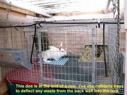 Rabbit Hutch Set Up Breathtaking Wire Rabbit Cages Pvc Wit Photos Block Diagram
