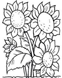 flower coloring pages 1001 coloringpages plants u003e u003e flowers