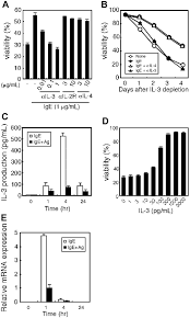 rapid and large amount of autocrine il 3 production is responsible