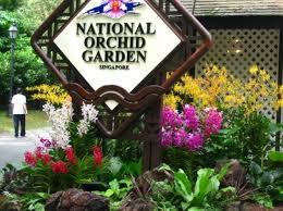 World Botanical Gardens Singapore Botanical Gardens The Most Beautiful Botanical Gardens