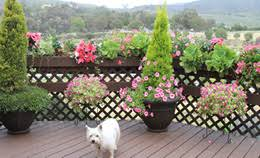 California Landscaping Ideas Southern California Gardening