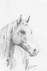 the 25 best horse head drawing ideas on pinterest drawings of