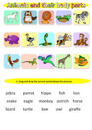the animals interactive worksheets