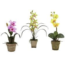 faux orchids set of faux orchids in rustic vases reviews joss