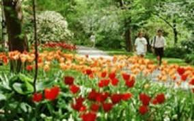 Michigan Botanical Gardens W J Beal Botanical Garden