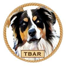 3 winds ranch australian shepherd hale pet door australian shepherd rescue organizations