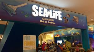 Map Of The Mall Of America by Sea Life Minnesota Aquarium In Mall Of America Youtube