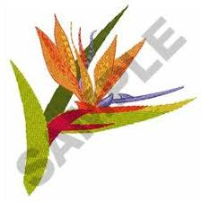 bird of paradise designs for embroidery machines