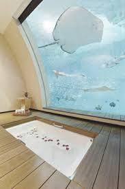 wohnideen minimalistischen aquarium wohnideen minimalistischen aquarium kidsstella info