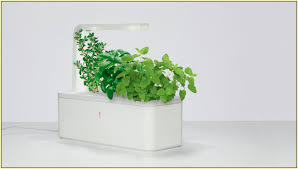 indoor herb garden kit home design ideas