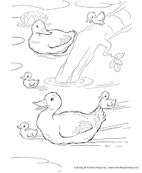 farm animal ducks swimming in the farm pond coloring pages