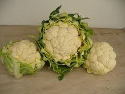 tips for growing cauliflower in the garden