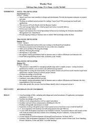 resume for exle excel vba developer resume sles velvet exles sle