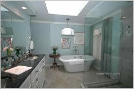 and blue paint brown tile light vanity dark colors navpa green